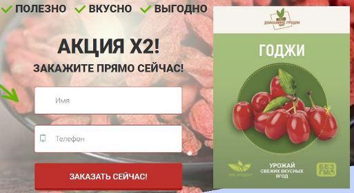 купить домашнюю ягодницу годжи в Зеленодольске
