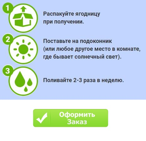 Как заказать купить домашнюю ягодницу годжи в Волжском