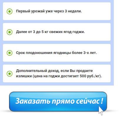 купить домашнюю ягодницу годжи в Соликамске
