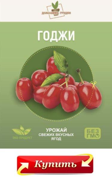 купить домашнюю ягодницу годжи в Златоусте